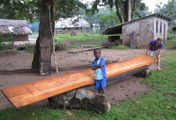 How one small sawmill can be a catalyst for positive change in the...