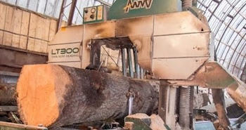 Wood-Mizer industrial sawmills in action in Latvia