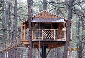 The Extravagant Family Treehouse